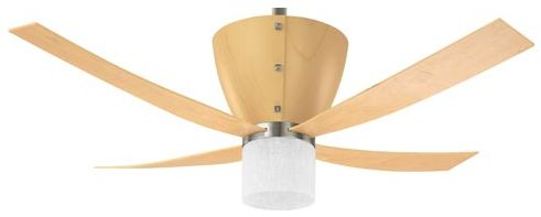 Best Ceiling Fans Which One Is It